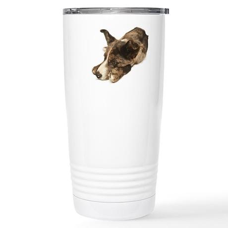 Adorable Rescue Australian Shepherd Mix Travel Mug