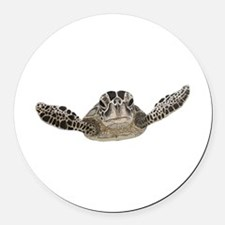 Sea turtle Round Car Magnet