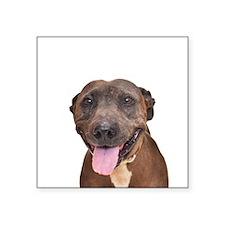 Cute Pit Bull Terrier Rescue Sticker