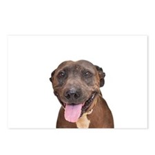 Cute Pit Bull Terrier Rescue Postcards (Package of