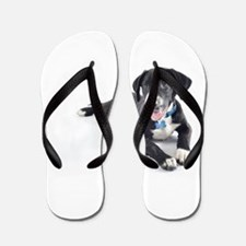 Funny Pointer and Lab Mix Flip Flops
