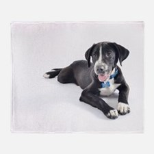 Funny Pointer and Lab Mix Throw Blanket
