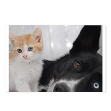 Cute Kitten and Dog Postcards (Package of 8)
