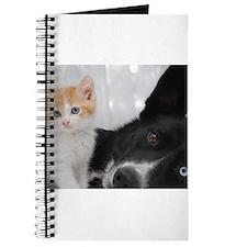 Cute Kitten and Dog Journal