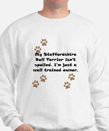 Well Trained Staffordshire Bull Terrier Owner Jump