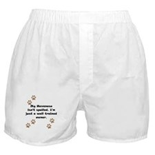 Well Trained Havanese Owner Boxer Shorts