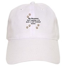 Well Trained Havanese Owner Baseball Cap