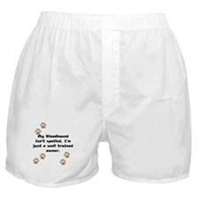 Well Trained Bloodhound Owner Boxer Shorts