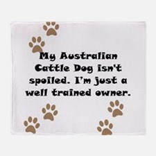 Well Trained Australian Cattle Dog Owner Throw Bla