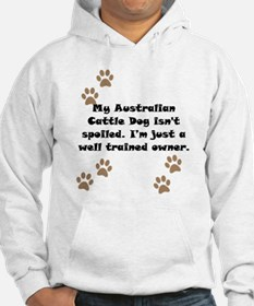 Well Trained Australian Cattle Dog Owner Jumper Ho