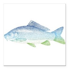 "blue and green fish Square Car Magnet 3"" x 3"""
