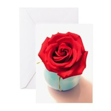 Rose Watercolor Greeting Cards (Pk of 10)