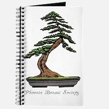 PBS - C Journal
