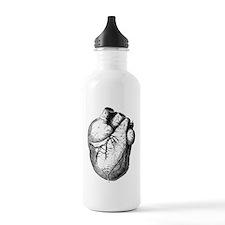 Anatomical Heart Water Bottle