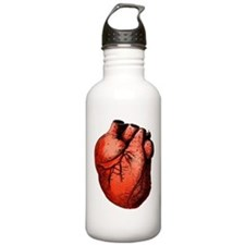 Human Heart Water Bottle