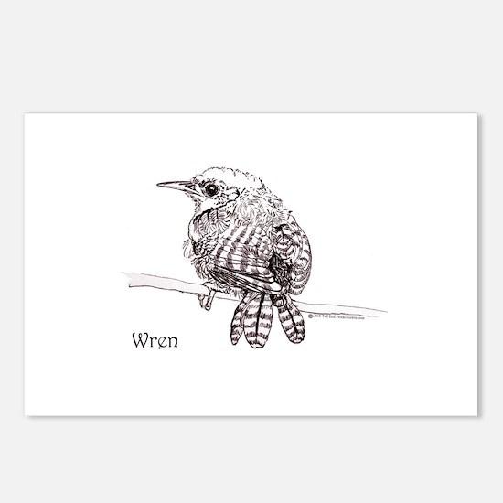 Little Brown Wren Postcards (Package of 8)