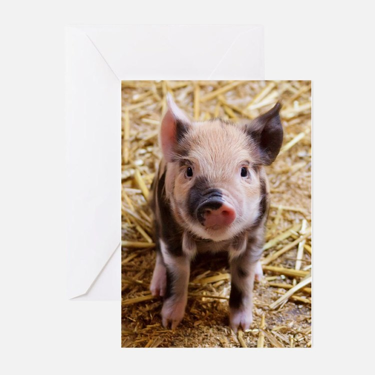 This Little Piggy Greeting Cards (Pk of 20)