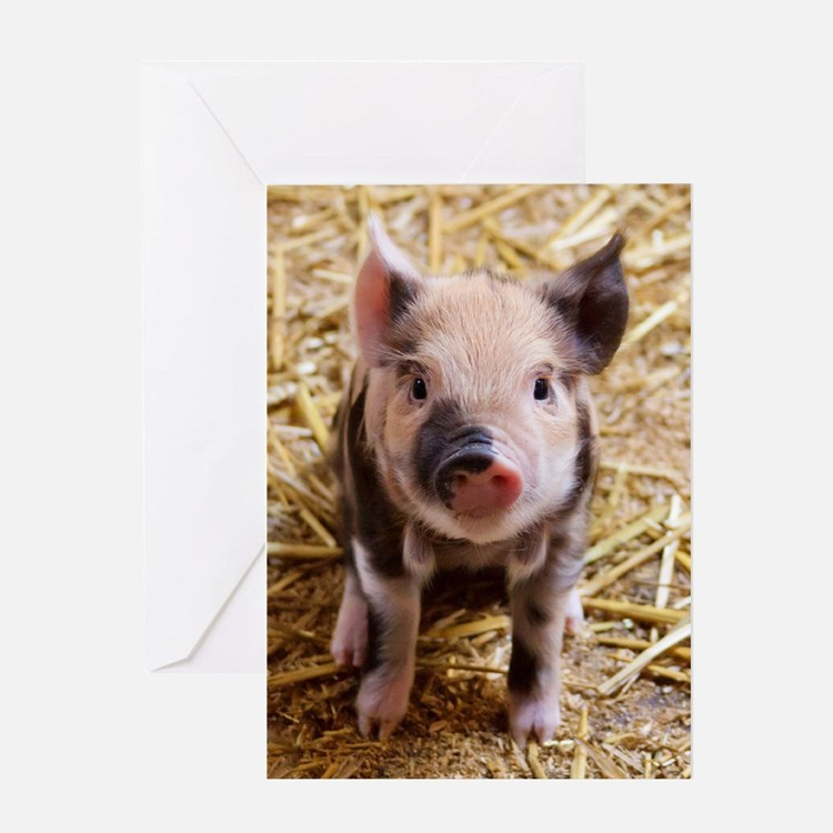This Little Piggy Greeting Card