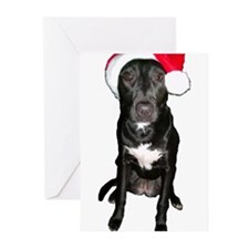 Dog Santa Cards (Pk of 10)
