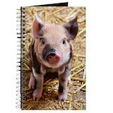 Pig Journals & Spiral Notebooks