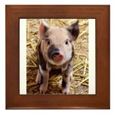 This Little Piggy Framed Tile