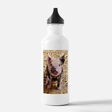 This Little Piggy Water Bottle