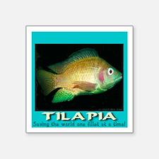 "Tilapia Square Sticker 3"" x 3"""