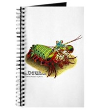 Peacock Mantis Shrimp Journal
