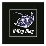 """XRAYMAG_10in_white.png Square Car Magnet 3"""" x 3"""""""