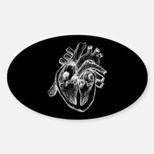 Human Heart Drawing Decal