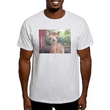 Alpaca Giving Raspberries T-Shirt