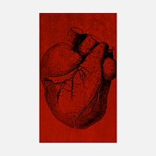 Human Heart Decal