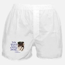 Spirit of Law Boxer Shorts