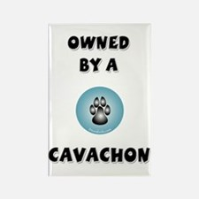 Owned by a Cavachon Rectangle Magnet