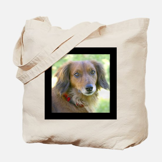 Long Haired Dachshund Tote Bag 10 commandments dog