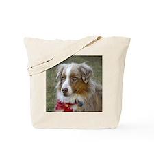 Australian ShepardTote Bag 10 commandmnts dogs