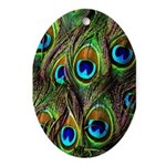 Peacock Feathers Invasion Ornament (Oval)