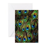 Peacock Feathers Invasion Greeting Cards (Pk of 10