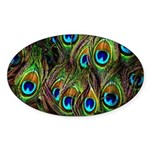 Peacock Feathers Invasion Sticker (Oval 50 pk)