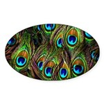Peacock Feathers Invasion Sticker (Oval 10 pk)