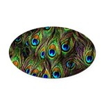 Peacock Feathers Invasion Oval Car Magnet