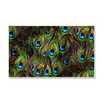 Peacock Feathers Invasion Car Magnet 20 x 12