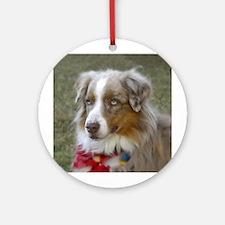 australian shepard dog Ornament (Round)