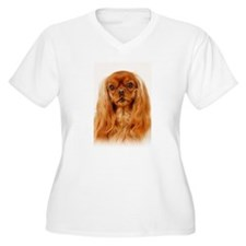 Cavalier King Charles Spaniel - Ruby Rodeo Plus Si