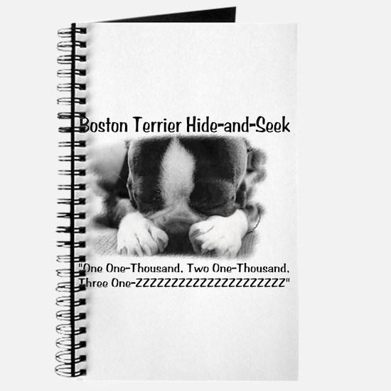 Boston Hide and Seek Journal