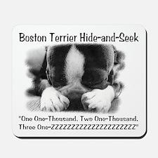 Boston Hide and Seek Mousepad