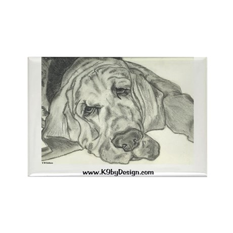 Bloodhound Sketch Rectangle Magnet (10 pack)