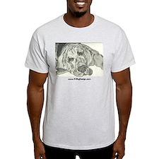 Bloodhound Sketch Ash Grey T-Shirt