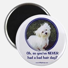 Bad Hair Day Magnet