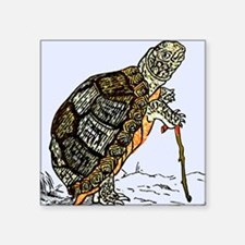 Our wise old friend the turtle Sticker